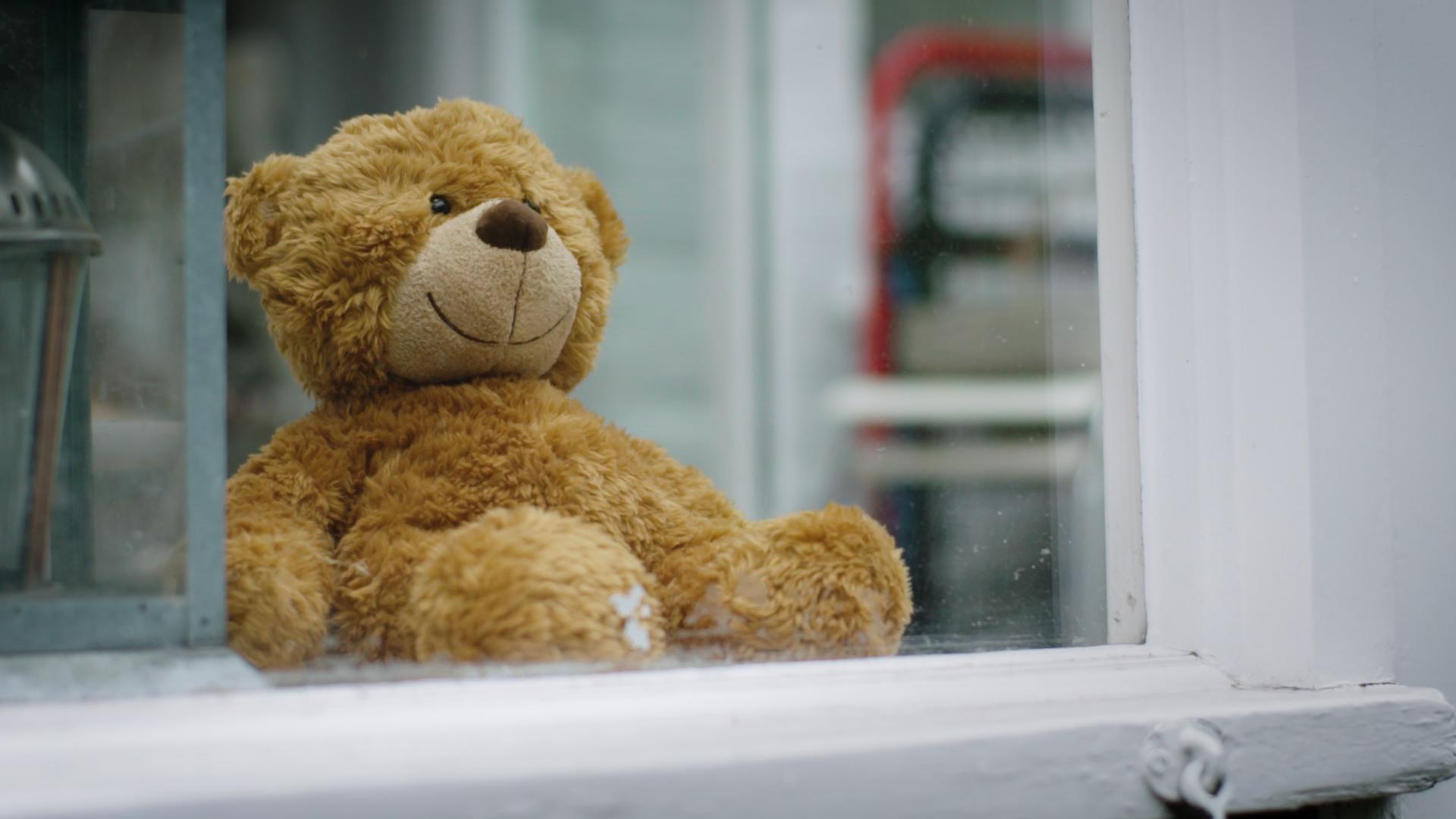 Teddy Bear-Faced Liars